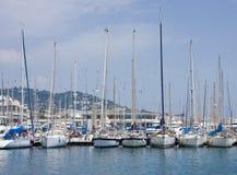 Bateaux à voiles blancs sur l'eau bleue dans la marina Image stock