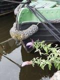 Bateaux étroits de canal à la célébration de 200 ans du canal de Leeds Liverpool chez Burnley Lancashire Photos libres de droits