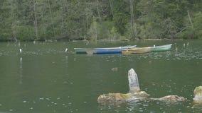 Bateaux amarrés sur le lac clips vidéos