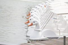 Bateaux blancs de pédale de canard Photographie stock