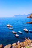 Bateaux colorés dans Riomaggiore Image libre de droits
