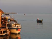 Bateaux dans le delta de Danube Images stock