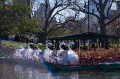 Bateaux de cygne dans le jardin public de Boston Photo libre de droits