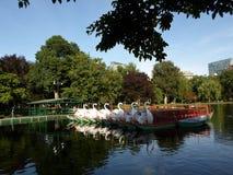 Bateaux de cygne, jardin public de Boston, Boston, le Massachusetts, Etats-Unis Photo libre de droits