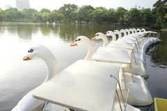 Bateaux de pédale de canard Photo libre de droits