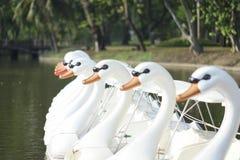 Bateaux de pédale de canard Images stock