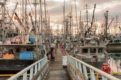 Bateaux de pêche à la marina image libre de droits
