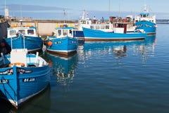 Bateaux de pêche bleus typiques dans Seahouses photo libre de droits