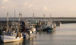 Bateaux de pêche dans Hervey Bay/Au Image stock