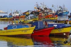 Bateaux de pêche dans le port de l'arica en piment photographie stock libre de droits