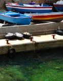 Bateaux de pêche, EL-Mriesseh d'Ein, Beyrouth Liban Photos stock
