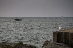 Bateaux de pêche sur le lac Michigan Photo stock