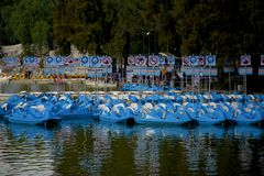 Bateaux de palette bleus Image stock
