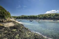 Bateaux de port de Solva à marée basse images libres de droits