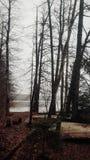 Bateaux en hiver images stock