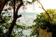 Bateaux en mer pendant le coucher du soleil, vu d'une falaise dans tous des arbres Images stock