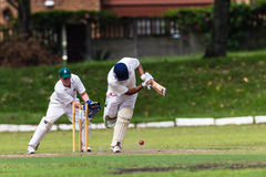 Batedor da bola do Wicket-Depositário do grilo Imagens de Stock Royalty Free