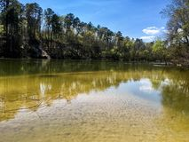 Batería de río con los árboles Fotografía de archivo