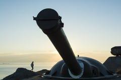 Batería Landsort Suecia de la artillería costera Imagen de archivo