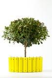 Baterías amarillas y un árbol verde Fotos de archivo libres de regalías