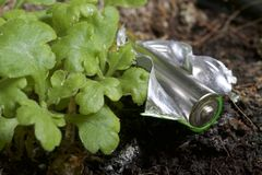 Baterías de corrosión de diversos formas y tamaños Mienten en la tierra al lado de una planta verde creciente Protección del medi Imágenes de archivo libres de regalías