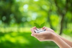 Baterías a disposición con el ambiente de la hoja Imágenes de archivo libres de regalías