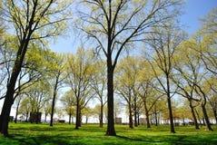 bateryjny miasto nowy parkowy York Zdjęcia Stock