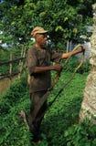 Batete - Equatoriaal Guinea Stock Afbeelding