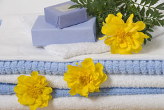 Bath accessories. Various items for bath soap towels and flower Stock Photos