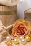Bath accessories and rose Stock Images