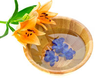 Bath bowl with lily flower Royalty Free Stock Photos