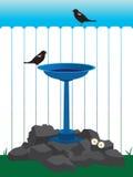 Bath d'oiseau d'arrière-cour illustration libre de droits