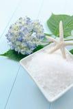 Bath de sel de mer frottent Image stock