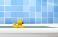 Bath Duck in Bath Stock Photos