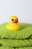 Bath duck Stock Photography