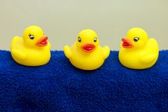 Bath ducks Stock Photography