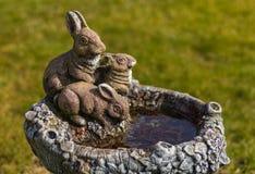 Bath en pierre d'oiseau Photos stock