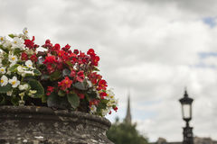 Bath, England - flowers against a cloudy sky. This image shows a view of one of the streets in the city of Bath, England Royalty Free Stock Image