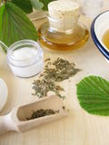 Bath essence, cream and tincture with hamamelis Royalty Free Stock Images
