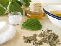 Bath essence, cream and tincture with hamamelis Royalty Free Stock Photography