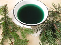 Bath essence with spruce and pine Stock Images