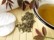 Bath essence with walnut leaves Stock Photo