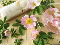 Bath essence with wild rose flowers Royalty Free Stock Photo