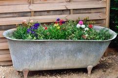 Bath with flowers Stock Photos