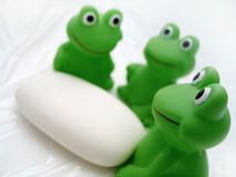 Bath Frogs and Soap. Three bath frogs sitting around a bar of white soap. Focus on the frog in the front stock image