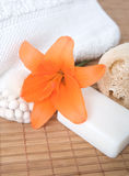 Bath products Royalty Free Stock Photography