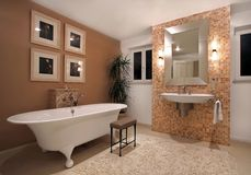 Bath room. Bathroom interior in modern contemporary home Stock Images