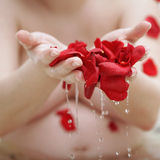 The bath of roses Stock Images