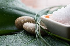 Bath salt Royalty Free Stock Image