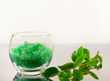 Bath salt and apple branch Royalty Free Stock Photos